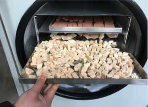 make freeze dried meat at home for pet